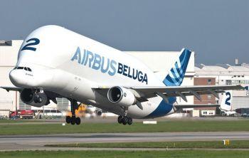 Airbus Beluga «Летающий кит в небе»