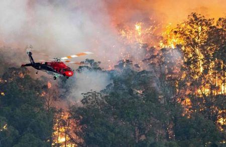 Как Австралия борется с лесными пожарами с воздуха?